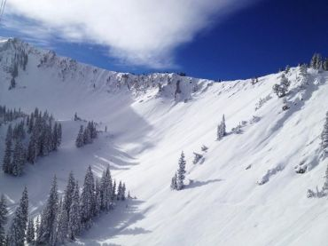 snowbird_ski_and_summer_resort_480243_i0