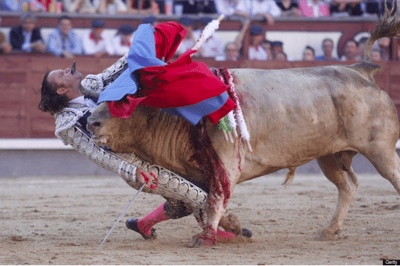 Don't Mess with Bulls: The Worst Bull Gorings
